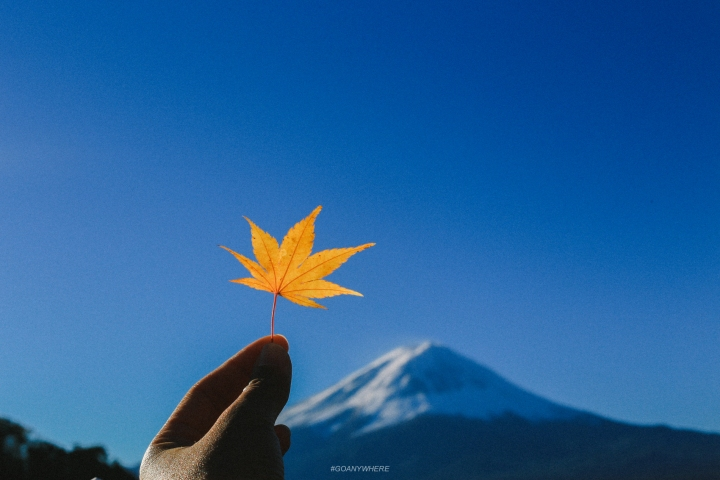 japan_autumnIMG_5634