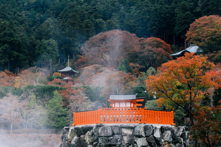 japan_autumnjapan_autumnIMG_4553