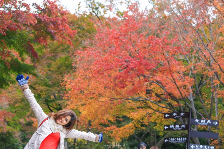 japan_autumnjapan_autumnIMG_4736