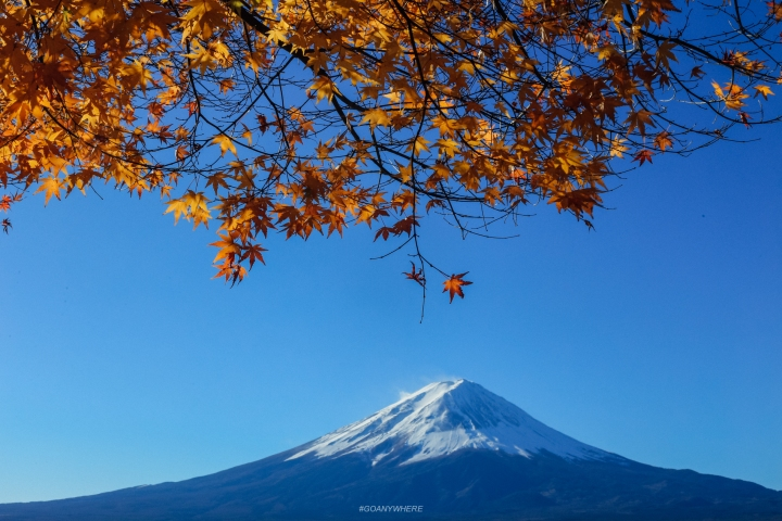 japan_autumnjapan_autumnIMG_5806