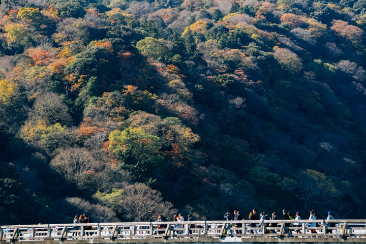 japan_autumnjapan_autumnIMG_6183