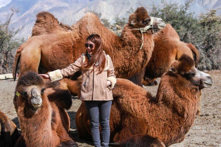Leh Ladakh_hunser sand 2
