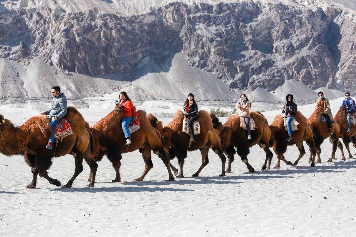 Leh Ladakh_hunser sand 3