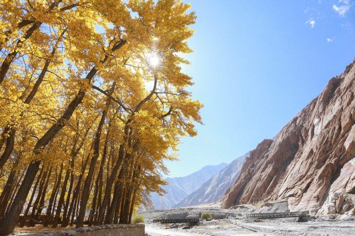 Leh Ladakh_IMG_7662