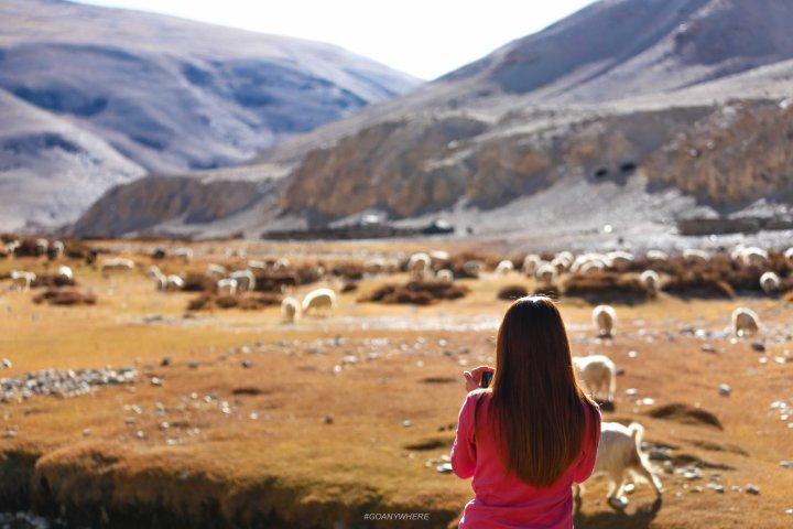 Leh Ladakh_IMG_7894