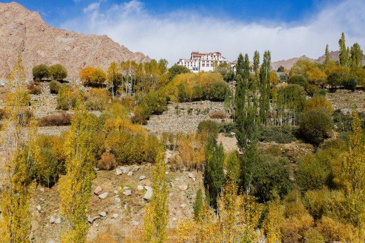 Leh Ladakh_IMG_9026