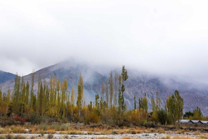 Leh Ladakh_IMG_9668