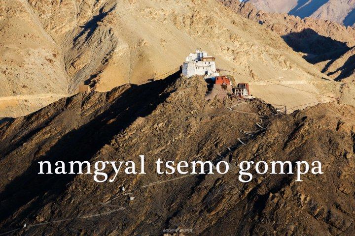 Leh Ladakh_namgyal1