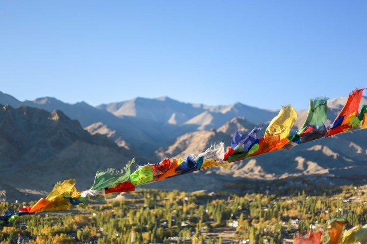 Leh Ladakh_namgyal3