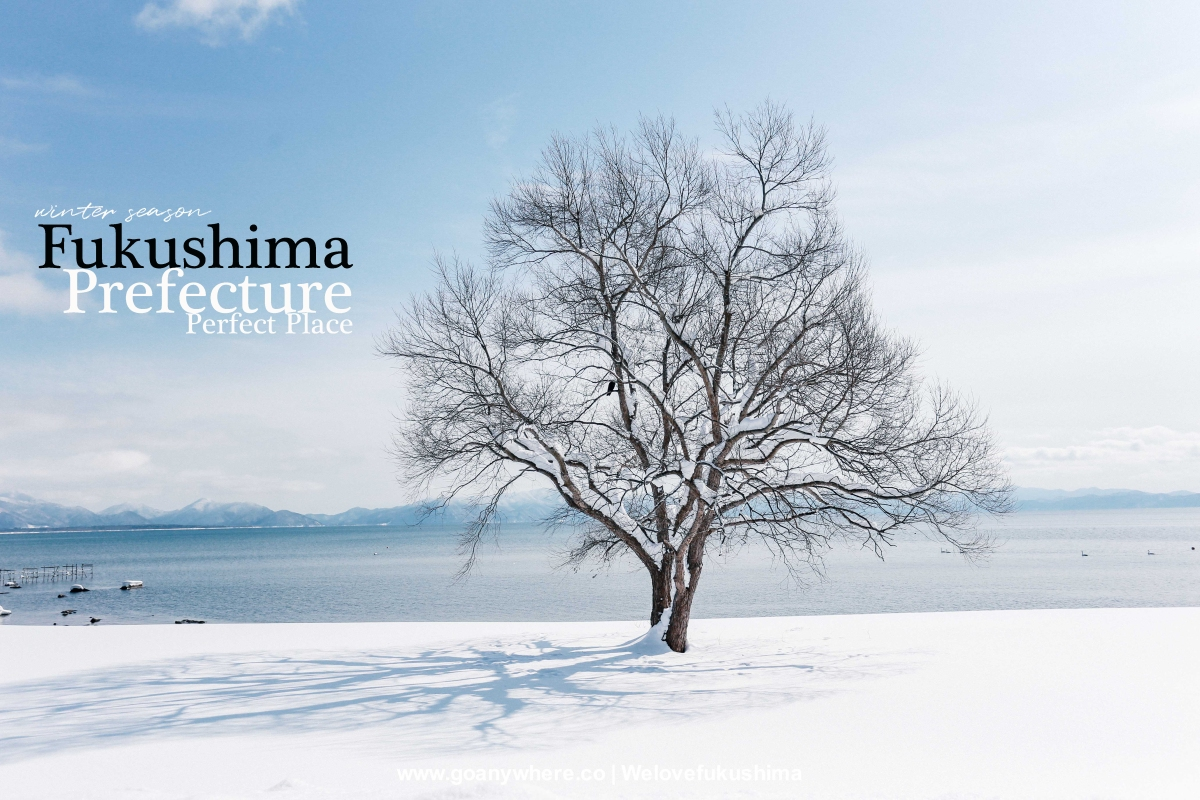 Winter is Calling !! | Fukushima  วันหิมะโปรยปราย
