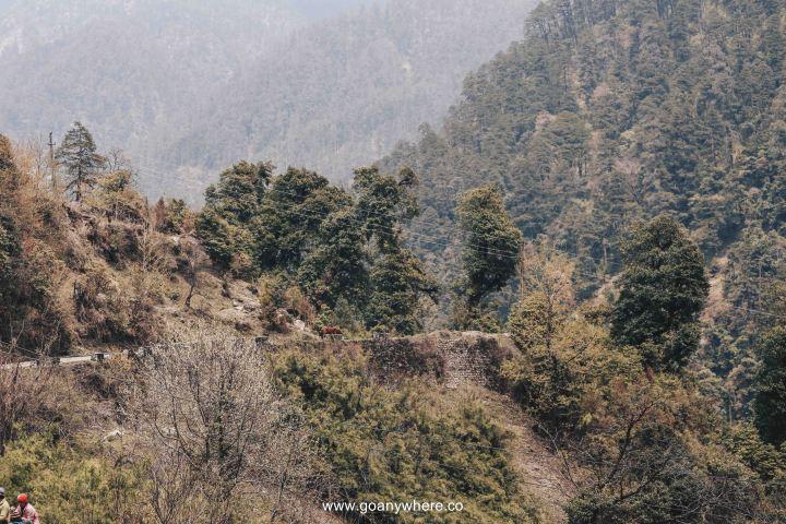 sikkim-india_IMG_4055