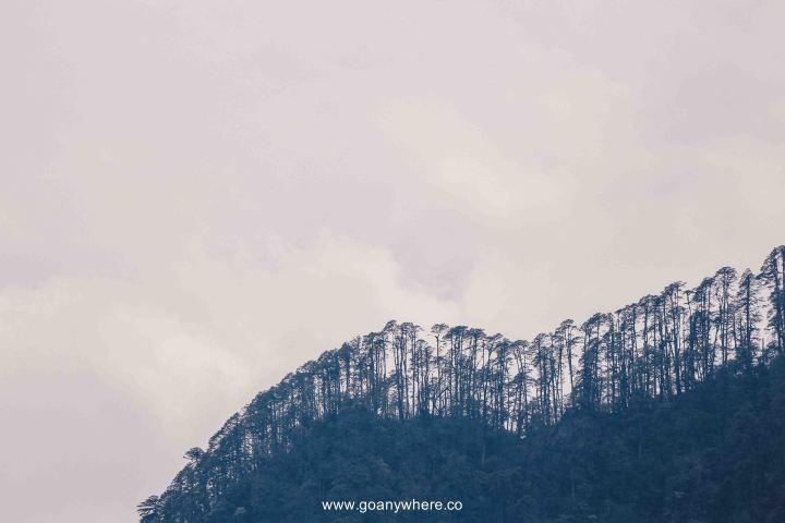 sikkim-india_IMG_4090