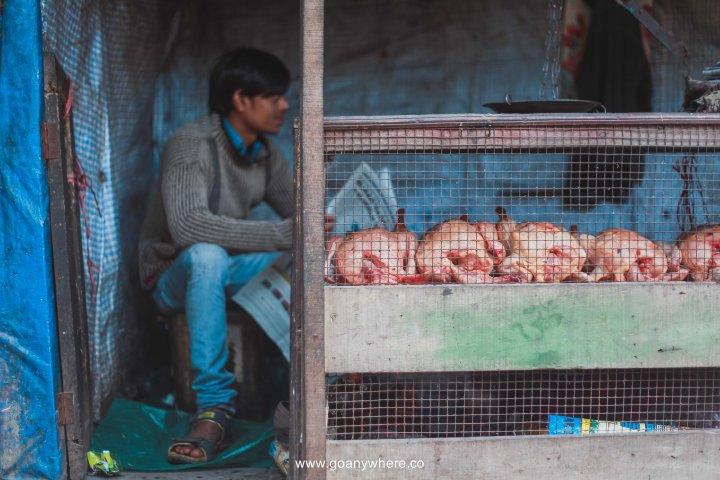 sikkim-india_IMG_5279