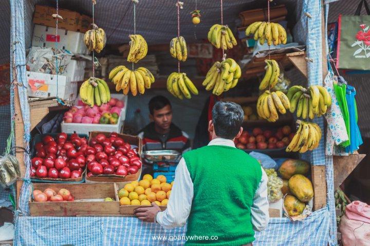sikkim-india_IMG_5281