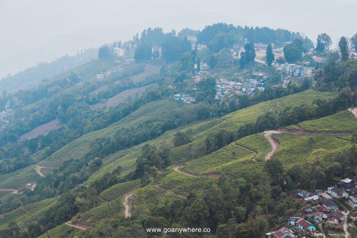 sikkim-india_IMG_5568