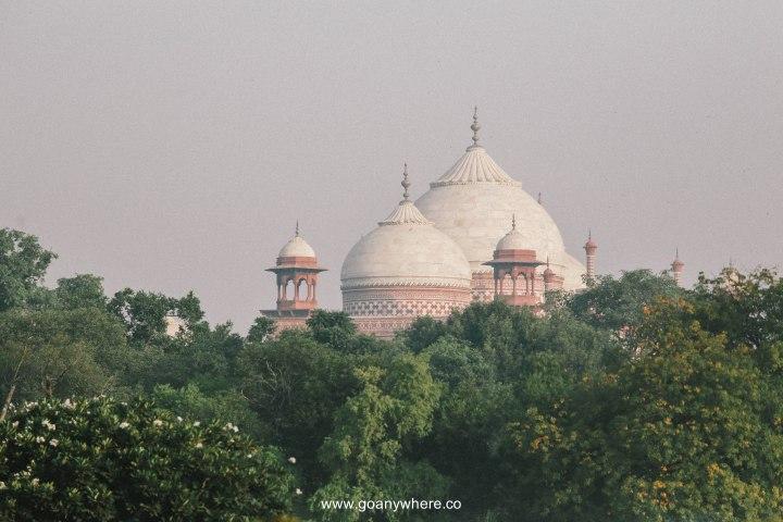 Tajmahal-Agra2017IMG_8955