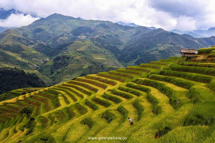 Mu Cang Chai -North VietnamIMG_5021