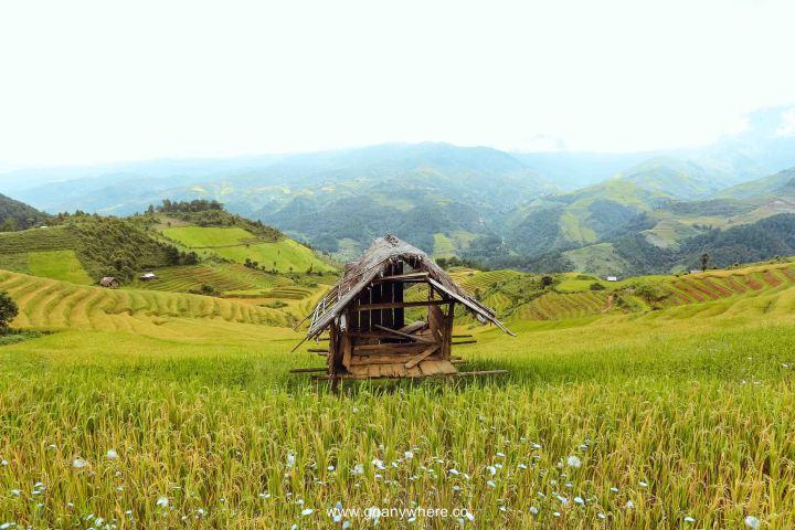 Mu Cang Chai -North VietnamIMG_5055