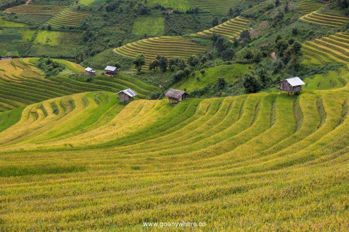 Mu Cang Chai -North VietnamIMG_5178