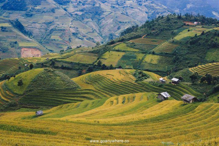 Mu Cang Chai -North VietnamIMG_5207