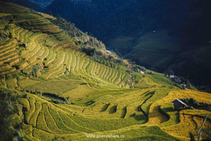 Mu Cang Chai -North VietnamIMG_5505