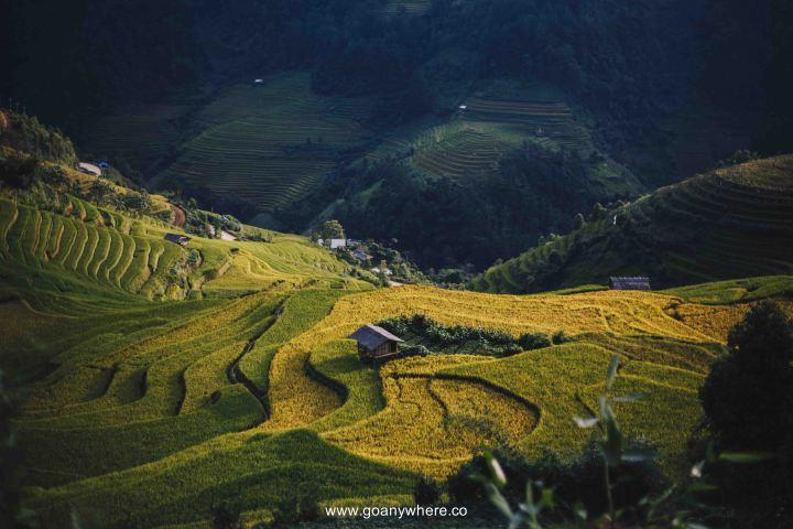 Mu Cang Chai -North VietnamIMG_5513