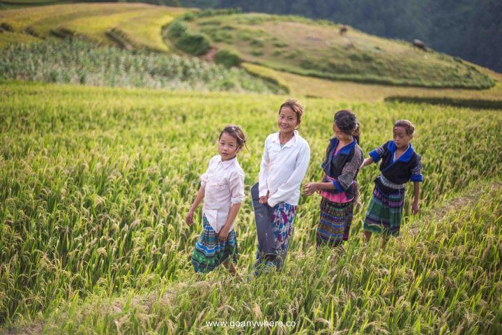 Mu Cang Chai -North VietnamIMG_5533