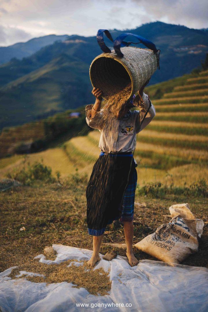 Mu Cang Chai -North VietnamIMG_5626