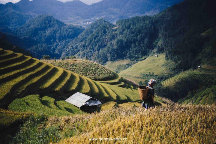 Mu Cang Chai -North VietnamIMG_5735