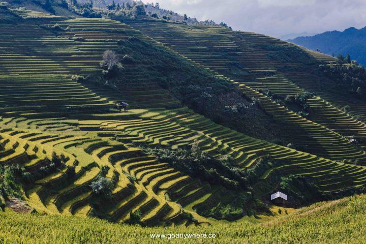 Mu Cang Chai -North VietnamIMG_5763