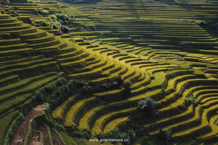 Mu Cang Chai -North VietnamIMG_5772