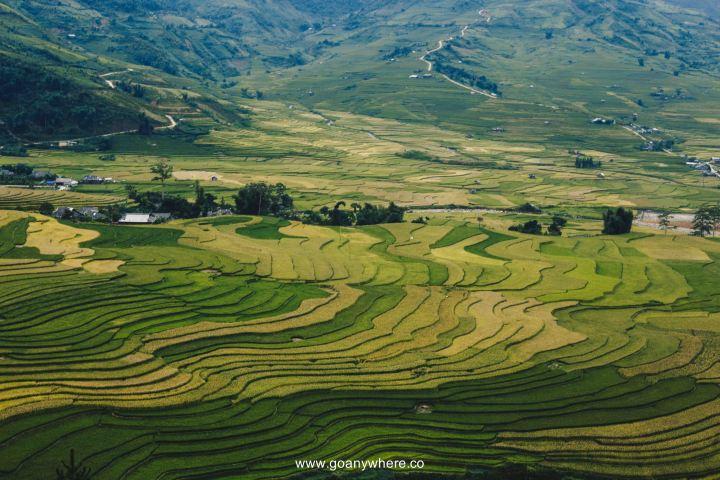 Mu Cang Chai -North VietnamIMG_5956