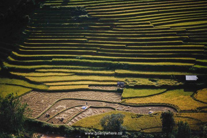 Mu Cang Chai -North VietnamIMG_6216