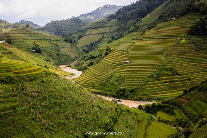 Mu Cang Chai -North VietnamIMG_6259