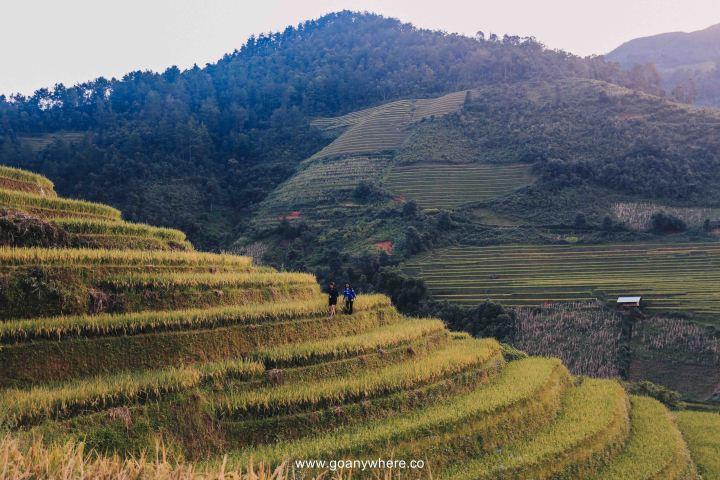 Mu Cang Chai -North VietnamIMG_6391