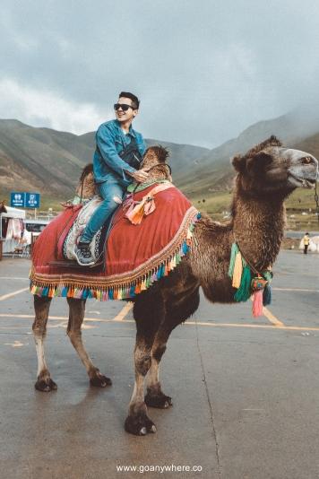 Bingou-rainbow mountain-zhangye-Xian-ซีอาน-จีน-ภูเขาสีรุ้ง-china-จางเย่-IMG_7766